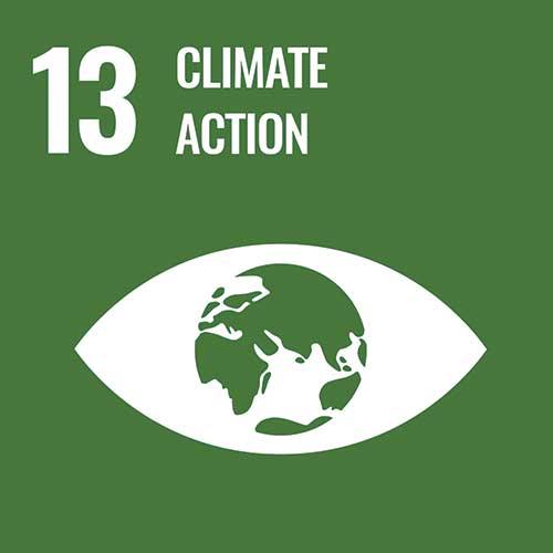 UN Sustainable Development Goals, Climate action