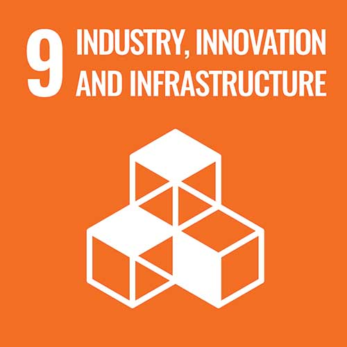 UN Sustainable Development Goals, Industry and Innovation