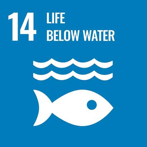 UN Sustainable Development Goals, Life below water