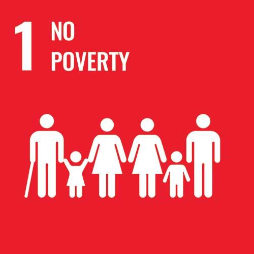 UN Sustainable Development Goals, No poverty