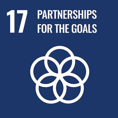UN Sustainable Development Goals, Partnerships for the goals