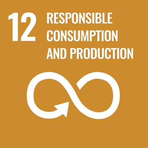 UN Sustainable Development Goals, Responsible Consumption