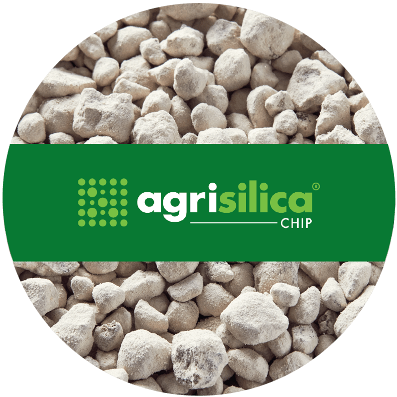 Agripower Fertiliser, Agrisilica Chip
