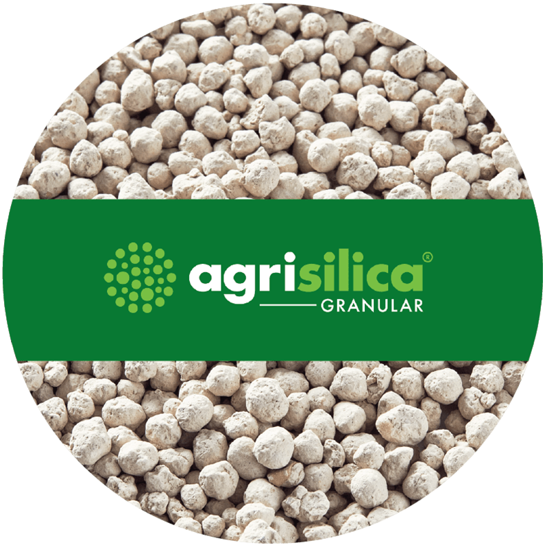 Agripower Fertiliser, Agrisilica Granular