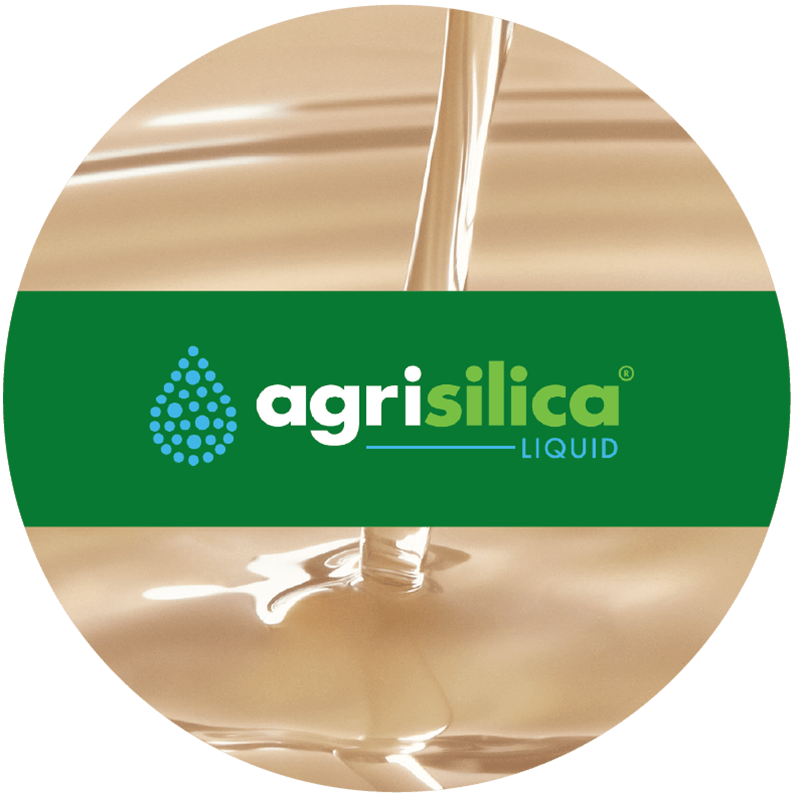 Agripower Fertiliser, Agrisilica Liquid