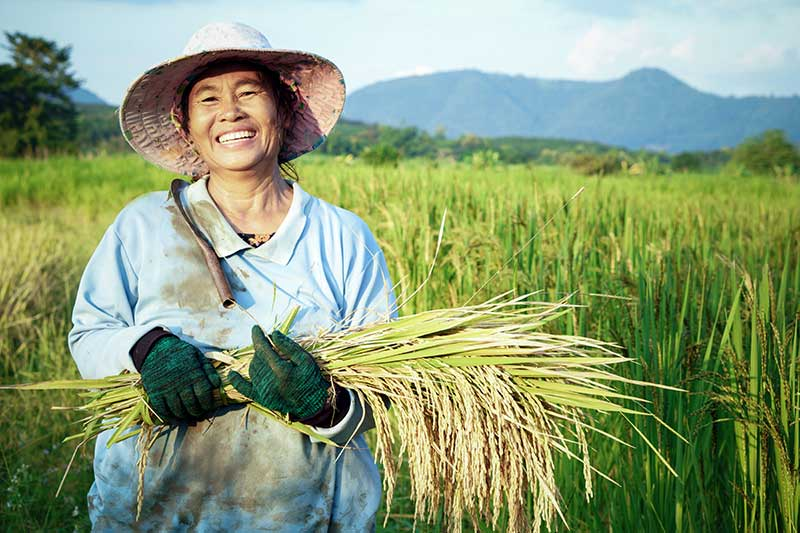 Agripower, Climate Smart Agriculture, Increasing food security