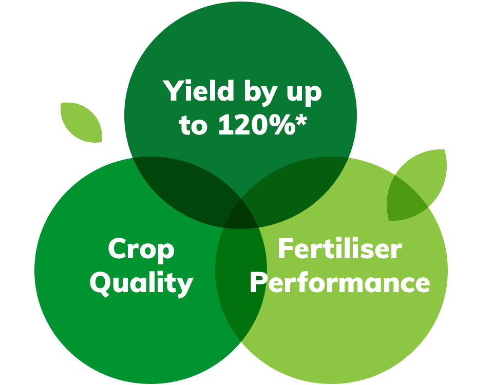Agripower Fertiliser Products, Increases Yields